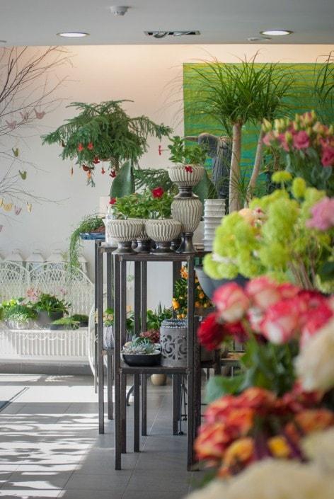 Ritos gėlių interjero nuotrauka