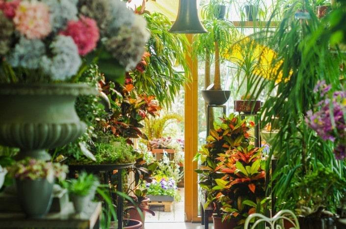 Ritos gėlių salono interjeras
