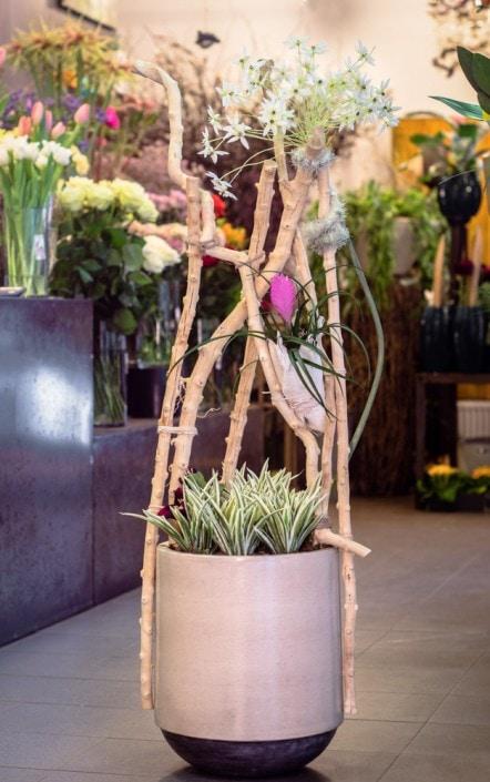 Gėlių kompozicija vazone
