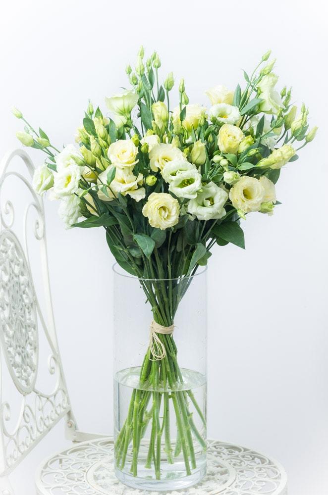 Baltos eustomos stiklo vazoje