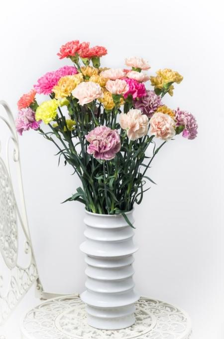 Įvairių spalvų gvazdikai vazoje