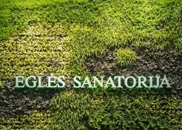 Žalioji siena Eglės sanatorijoje Birštone
