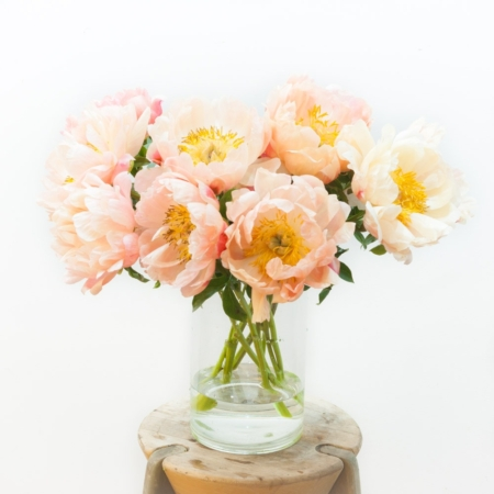 Pasteinių spalvų bijūnai vazoje